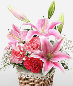 Stargazer Lilies Basket-Pink,Red,Carnation,Lily,Arrangement,Basket