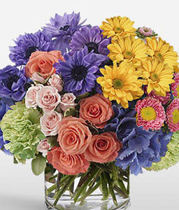 Paint My Love-Blue,Mixed,Orange,Pink,Yellow,Mixed Flower,Gerbera,Daisy,Chrysanthemum,Rose,Arrangement