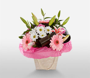 Pretty Party-Green,Pink,White,Daisy,Gerbera,Lily,Arrangement