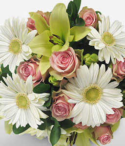 Tranquility-Green,Mixed,Pink,White,Daisy,Gerbera,Lily,Mixed Flower,Rose,Bouquet