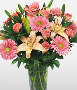 In The Pink-Pink,Daisy,Gerbera,Lily,Mixed Flower,Rose,Arrangement