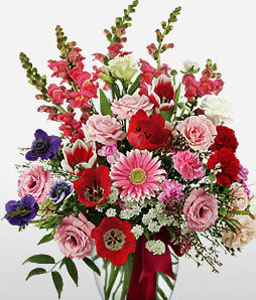 Floral Delight-Mixed,Pink,Purple,Red,White,Mixed Flower,Gerbera,Chrysanthemum,Carnation,Rose,Arrangement