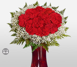 Circle Of Love-Red,Carnation,Arrangement