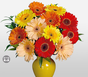 Sunshine-Mixed,Orange,Peach,Red,Yellow,Daisy,Gerbera,Arrangement