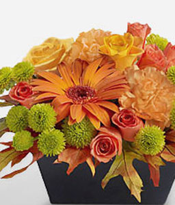 Shining And Smiling-Green,Orange,Yellow,Carnation,Chrysanthemum,Gerbera,Rose,Arrangement
