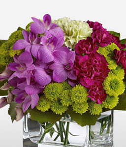 Tete A Tete-Green,Lavender,Mixed,Purple,Red,Orchid,Chrysanthemum,Carnation,Arrangement