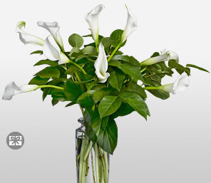 Snowflakes-White,Lily,Arrangement