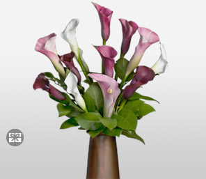 Sugarplum-Mixed,Pink,Purple,Red,White,Lily,Arrangement