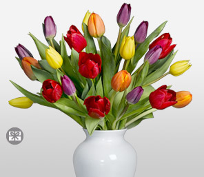 Coleurs De La Vie-Mixed,Orange,Purple,Red,Yellow,Tulip,Arrangement