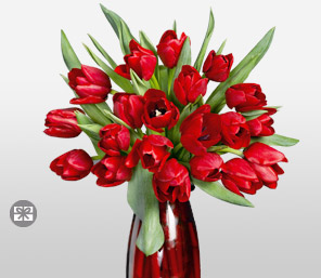 Rapturous Reds-Red,Tulip,Arrangement