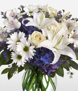 Posh-Blue,White,Alstroemeria,Chrysanthemum,Hydrangea,Lily,Mixed Flower,Rose,Arrangement