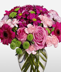Pink Regard - Same Day Flowers-Green,Mixed,Pink,Red,Carnation,Mixed Flower,Rose,Arrangement