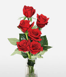 Say It With Six Red Roses-Red,Rose,Arrangement