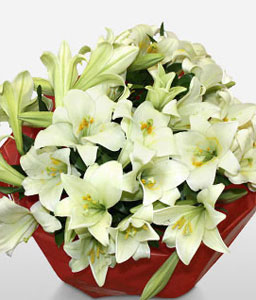Lilies Of Love-White,Lily,Bouquet