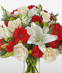Regal Touch-Red,White,Carnation,Daisy,Gerbera,Lily,Rose,Arrangement