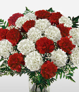 Carnation Fascination-Red,White,Carnation,Bouquet