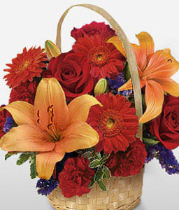Vibrant Splash-Orange,Red,Carnation,Daisy,Gerbera,Lily,Rose,Arrangement,Basket
