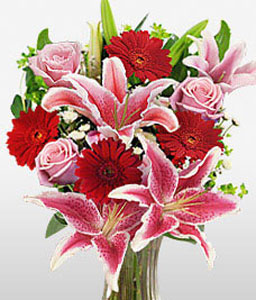Majestic Glee-Pink,Red,Daisy,Gerbera,Lily,Rose,Arrangement
