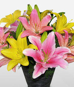 Brasilia-Pink,Yellow,Lily,Arrangement