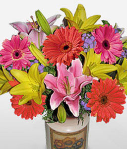 Rio Carnival-Blue,Mixed,Orange,Pink,Daisy,Gerbera,Lily,Arrangement