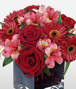 Season Luster-Pink,Red,Alstroemeria,Daisy,Gerbera,Rose,Arrangement