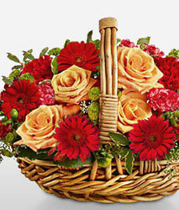 Chianti-Orange,Red,Carnation,Daisy,Gerbera,Rose,Arrangement,Basket