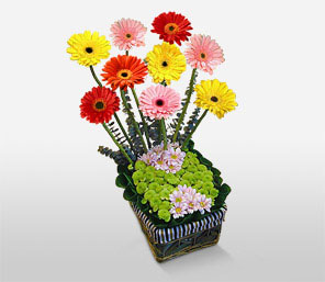 Sparkling Centerpiece-Mixed,Pink,Red,Yellow,Daisy,Gerbera,Arrangement,Basket