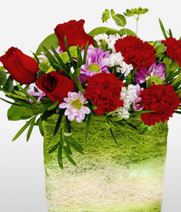 Chloe-Green,Red,Carnation,Rose,Arrangement