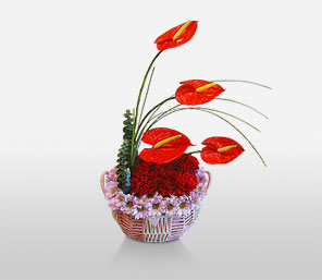 Asian Inspiration-Green,Red,Anthuriums,Carnation,Arrangement,Basket