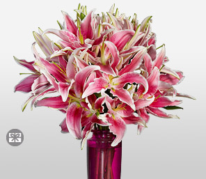 Classic Pink Lilies-Pink,Lily,Arrangement