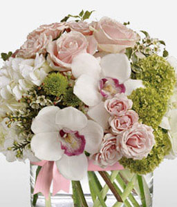Grace-Green,Mixed,Pink,White,Chrysanthemum,Hydrangea,Mixed Flower,Orchid,Rose,Arrangement