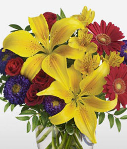 Spectacular-Mixed,Purple,Red,Yellow,Alstroemeria,Daisy,Gerbera,Lily,Mixed Flower,Rose,Arrangement