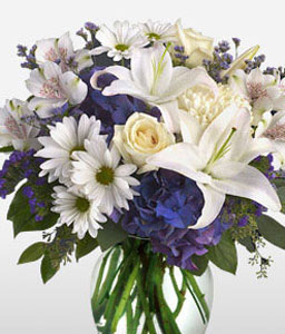 Posh-Blue,Purple,Violet,White,Alstroemeria,Hydrangea,Lily,Mixed Flower,Rose,Arrangement