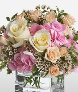 Aglow-Mixed,Peach,Pink,White,Hydrangea,Mixed Flower,Rose,Arrangement