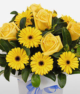 Bright Sunshine-Yellow,Gerbera,Rose,Arrangement