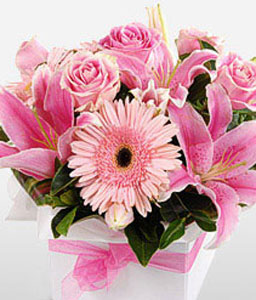 Lush Pink-Pink,Gerbera,Lily,Mixed Flower,Rose,Arrangement