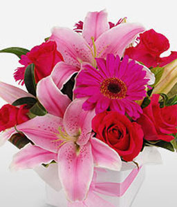Bright Wonder-Pink,Red,Gerbera,Lily,Mixed Flower,Rose,Arrangement