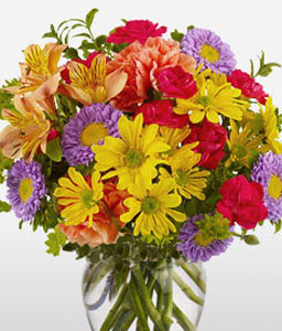 Spring Wonder-Mixed,Orange,Purple,Yellow,Alstroemeria,Carnation,Chrysanthemum,Daisy,Gerbera,Mixed Flower,Arrangement