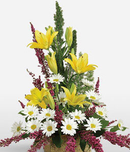 Tribute-Mixed,White,Yellow,Daisy,Lily,Mixed Flower,Arrangement
