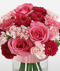 Charm-Mixed,Pink,Red,Carnation,Gerbera,Mixed Flower,Rose,Arrangement
