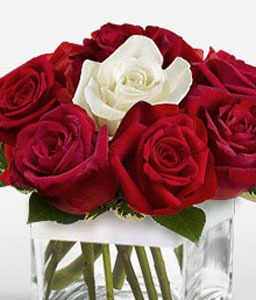Merry Cher-Red,White,Rose,Arrangement