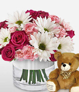 Bliss-Mixed,Pink,Red,White,Carnation,Daisy,Mixed Flower,Rose,Teddy,Arrangement