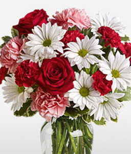 Fetiche-Mixed,Pink,Red,White,Carnation,Chrysanthemum,Mixed Flower,Rose,Arrangement