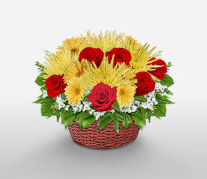 Garden of Eden-Green,Mixed,Red,White,Yellow,Daisy,Gerbera,Rose,Arrangement,Basket