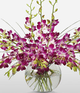 Purple Drops-Purple,Orchid,Arrangement