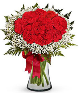 Sweetheart<Br><span>Dozen Red Carnations</span>