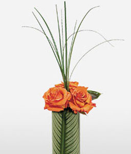 In A Modern Mood-Orange,Rose,Arrangement