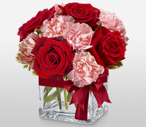 Jaime<Br><Font Color=Red>Red Roses and Pink Carnations Arrangement</Font>