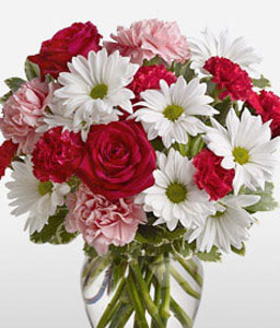 Fetiche-Mixed,Pink,Red,White,Carnation,Chrysanthemum,Daisy,Mixed Flower,Rose,Arrangement