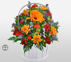 Garden Beauty-Mixed,Orange,Purple,Red,Mixed Flower,Gerbera,Daisy,Carnation,Arrangement,Bouquet